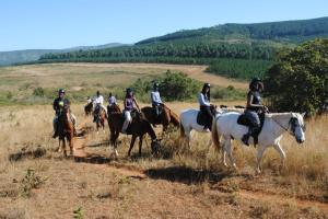 The South African Media team horse-back riding in Swaziland courtesy of Swaziland Tourism